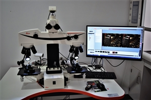 Comparison Microscope