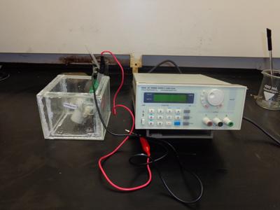 Anodization device