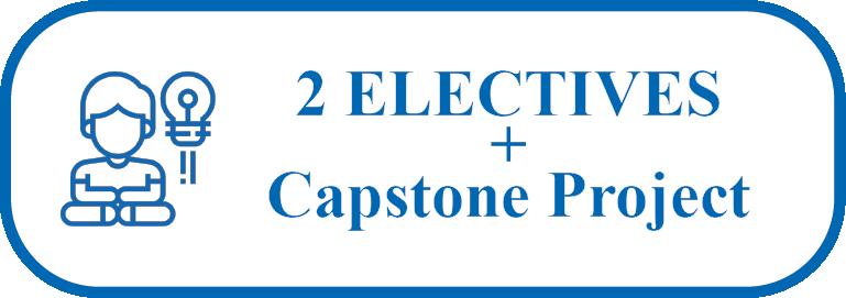 Elective Capstone