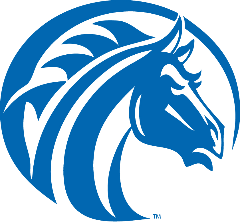 Fayetteville State University S Center For Defense And: Logos