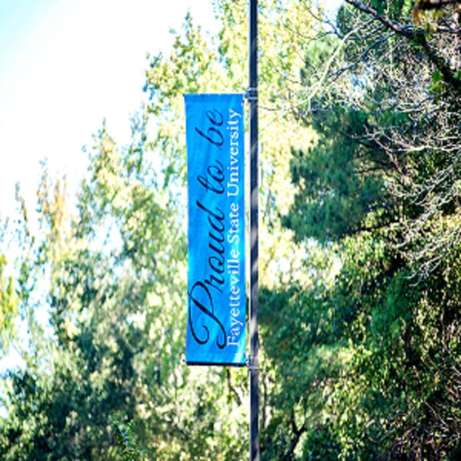 FSU Banner